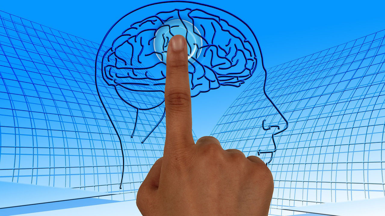 מה קורה במוח כאשר מדמיינים