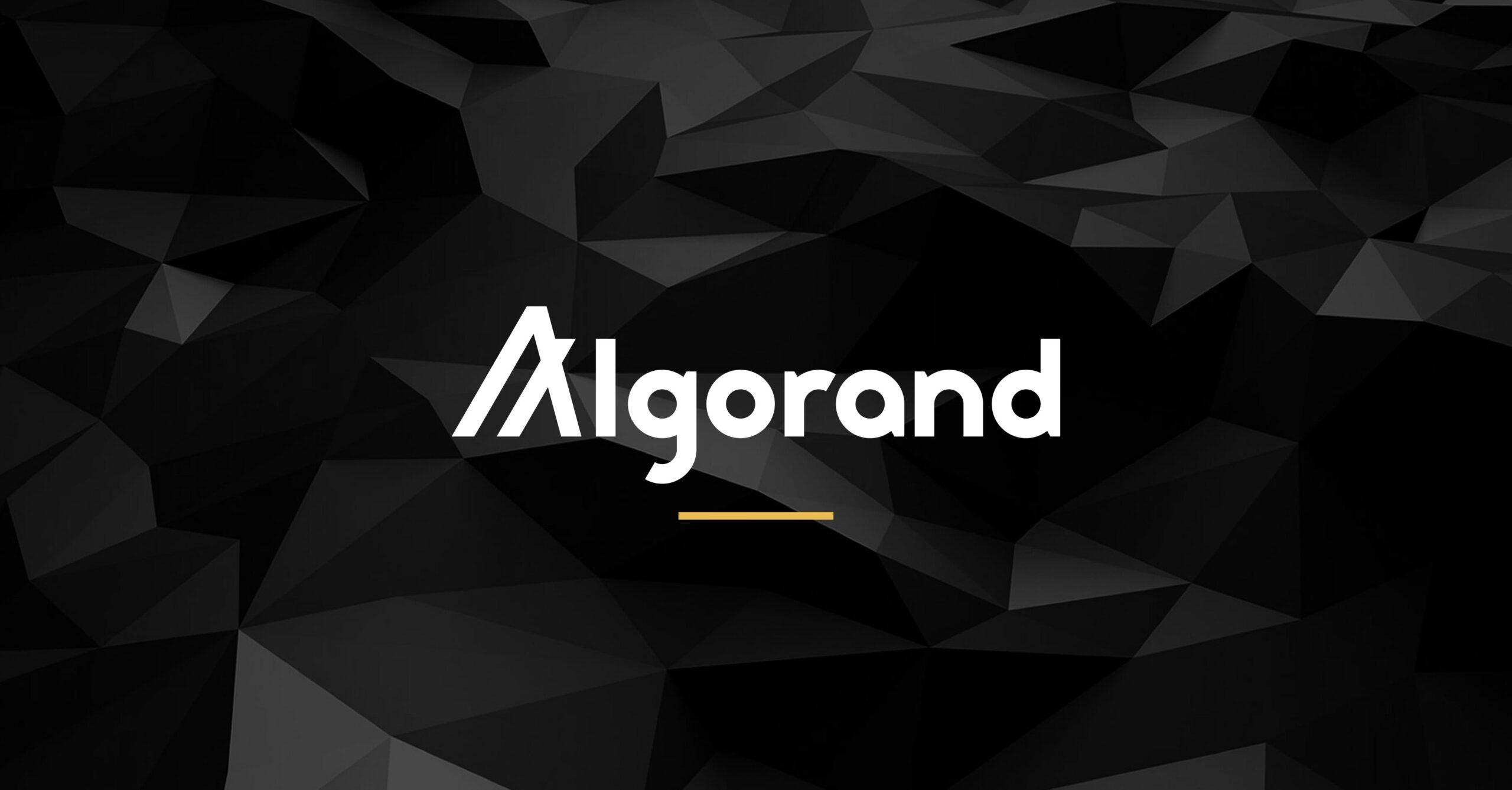 A SIMPLE EXPLANATION OF ALGORAND POS GOVERNANCE INFRASTRUCTURE