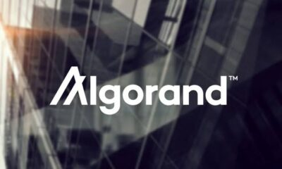 Insight to the Benefits of Adopting Algorand Blockchain on Mentat Innovations