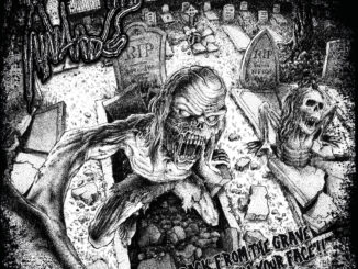 Album Review: Innards - Back From The Grave, Straight In Your Face