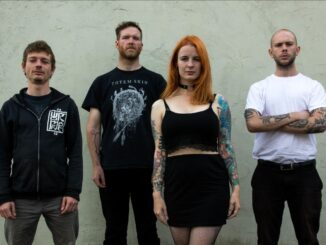 Svalbard Stream New Single