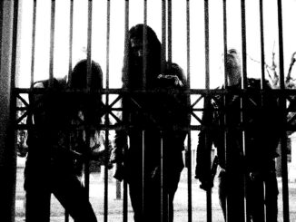 Album Review: Of Feather And Bone - Sulfuric Disintegration