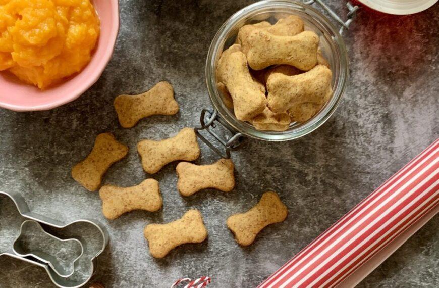Cookies per Amici Pelosi