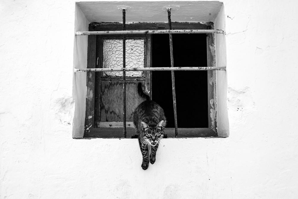 Suzy Mitchell Travel Photography