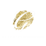 gold photography award