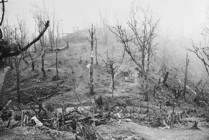 A view of the Garrison Hill battlefield, the key to the British defences at Kohima