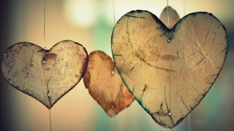 [Poem] Dear Love