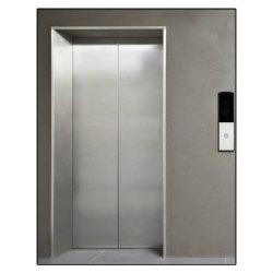 SS Swing Elevator Doors