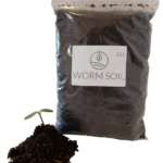 Worm Soil with seedling