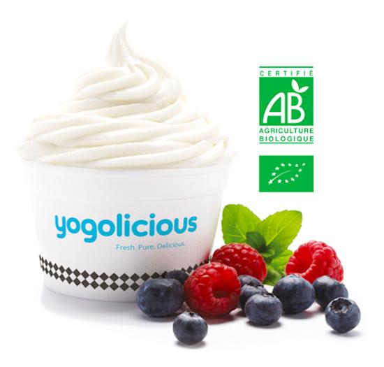 Frozen_Yogurt