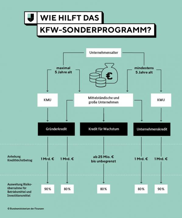 steuerberater-ludwigsburg-tamara-walter-kfw-hilfsprogramm-schaubild-ueberischt-kredite