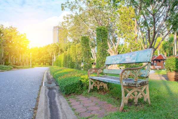 Bench in beautiful city park in spring time