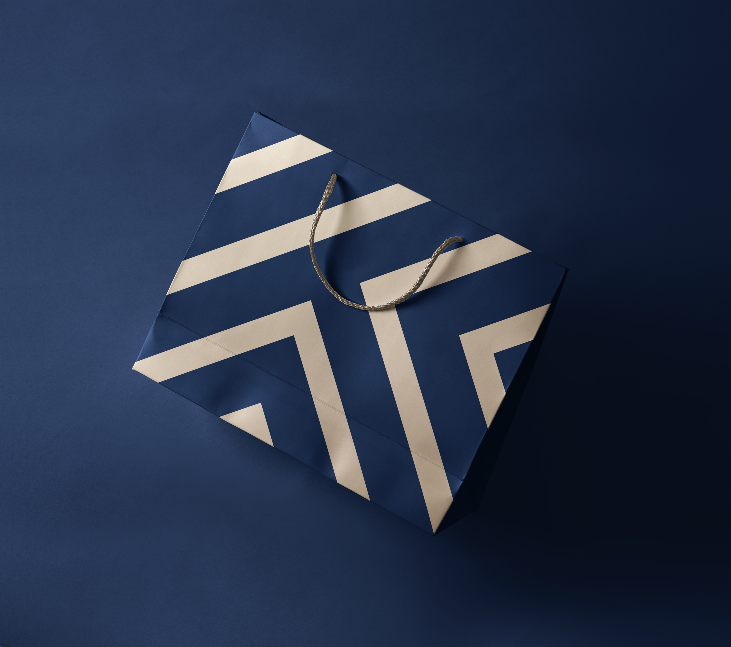 Triviso_Bag