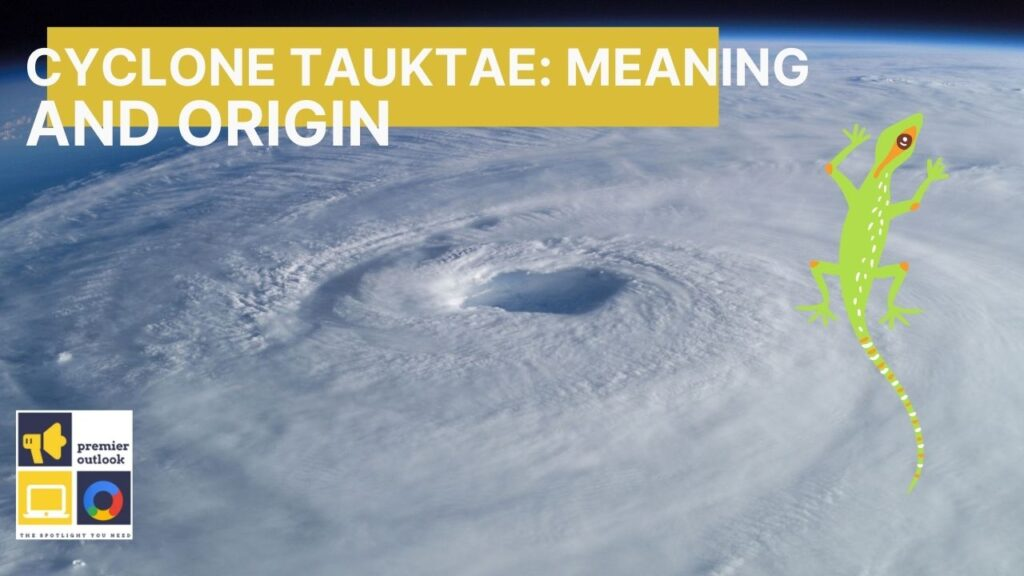 Cyclone Tauktae: Meaning and origin