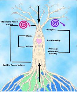 Chakra spirals FLT iSOHA Classes