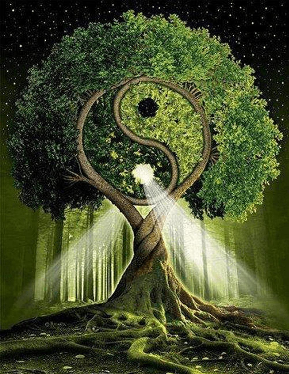 chi-cultivation-circulation-book-cz-or-en
