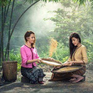 prague-food-mood-healing