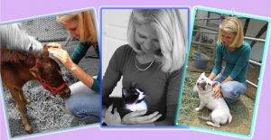 animal-communication-beth-riedler-fabulous-fridays