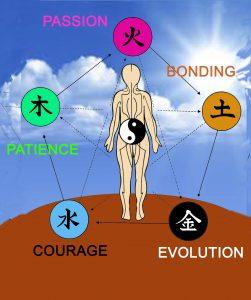 prague-2019-chinese-astrology-forecast-balance-w-5-element-oils