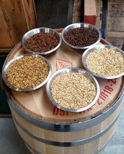 Malted-barley-at-Westland-Distillery