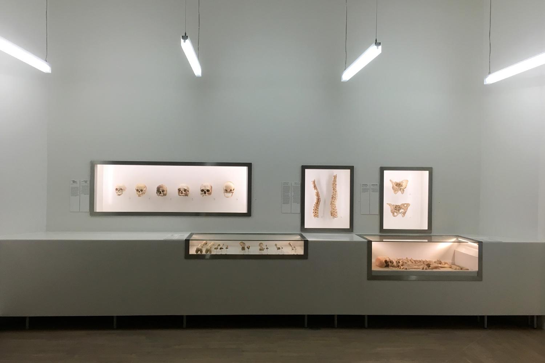 KIBOX-bahrain_museonazionale-7