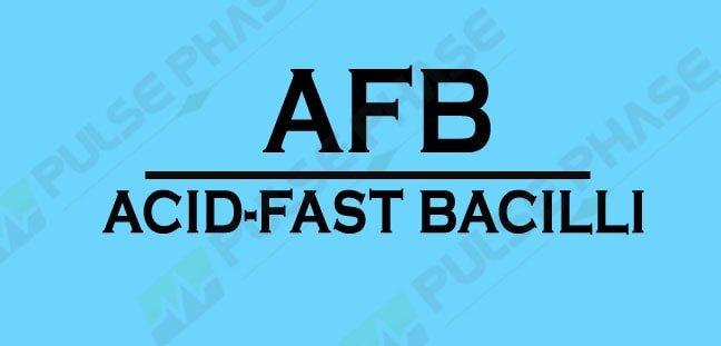 AFB Full form