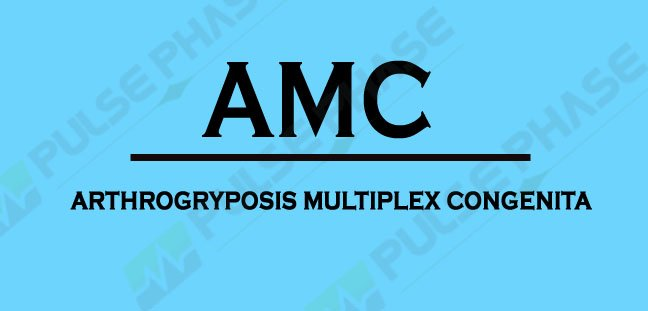 Full form of AMC in Medical terms
