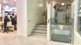 Modern Disabled Access Platform Lift