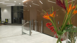 Contemporary Disabled Access Lift