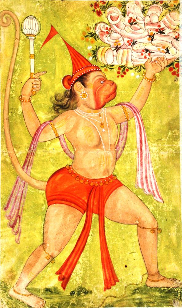 78.Hanuman with Sanjiveeni