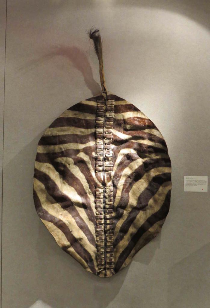 Jacaranda Tribal from NY South African shield - HALI