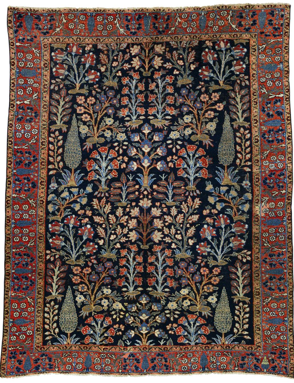 A shrub carpet