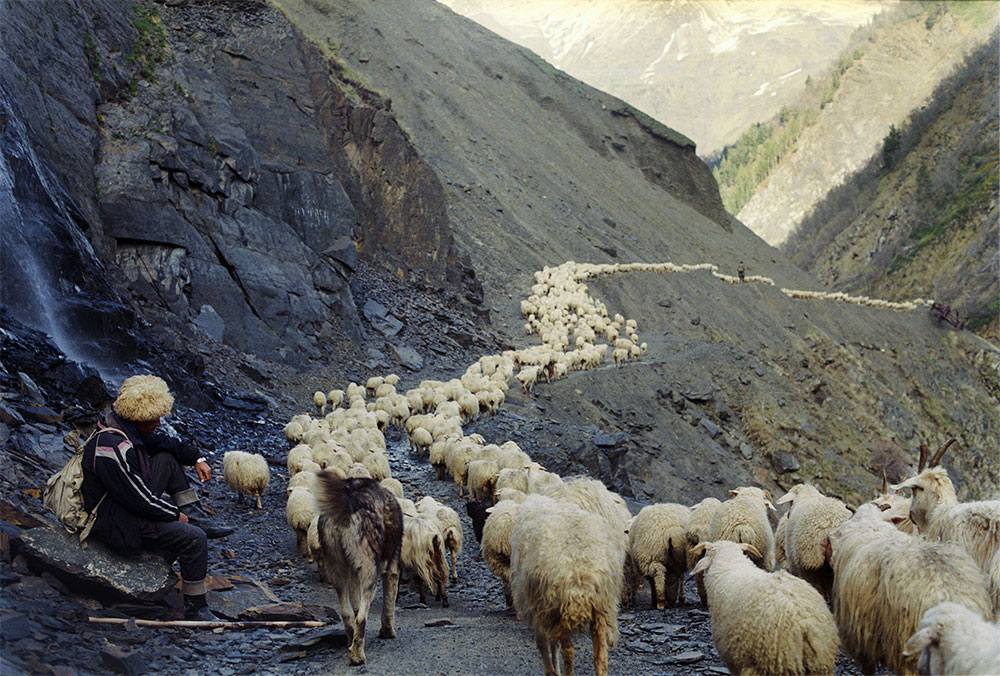 The road to Tusheti road in the summer months (4), or helicopter. This is the road traversed each year by the Tush shepherds, transhumant to this day.