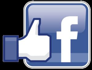 Facebook for Cricket Surfaces, Cricket Installations.