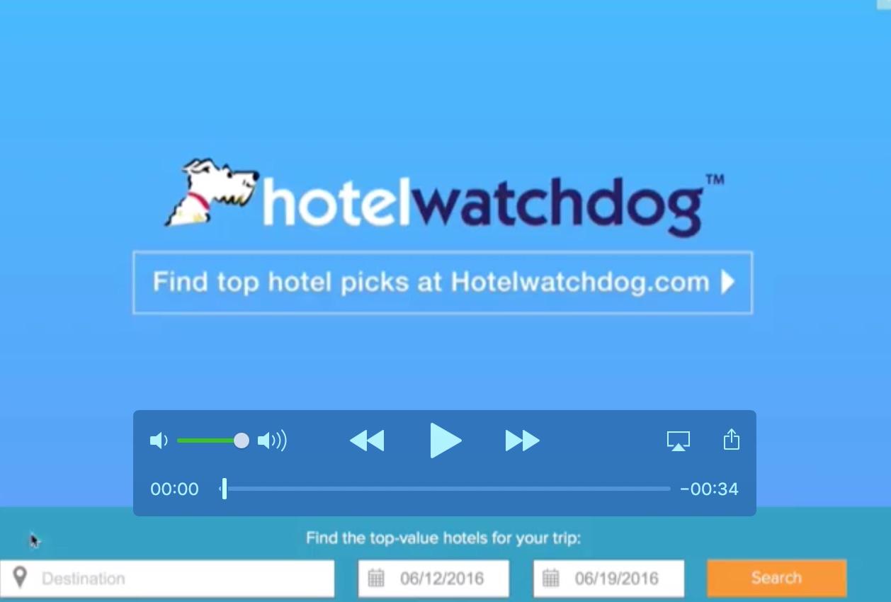 Hotel Watch Dog Video