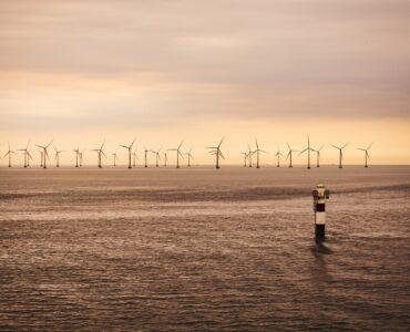Vindkraft ødelegger naturen