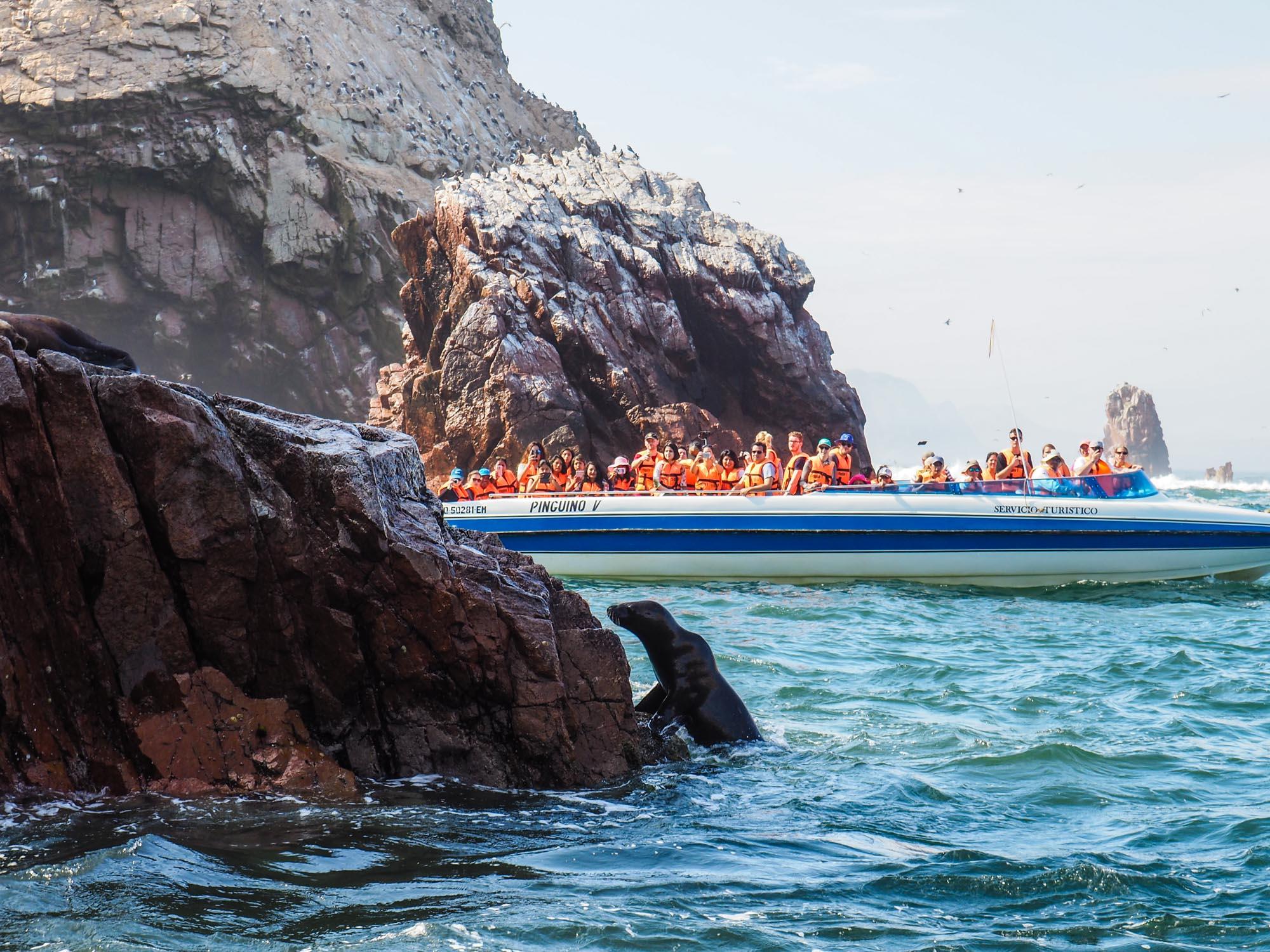 islas ballestas boat tour