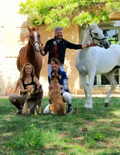 HorsesinProvence