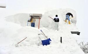 snow1ap_2105069i
