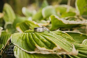 Wedding rings on a leaf