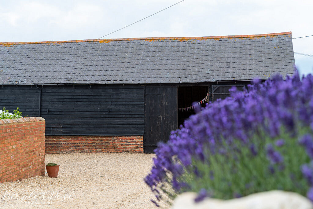 Barn framed by lavender