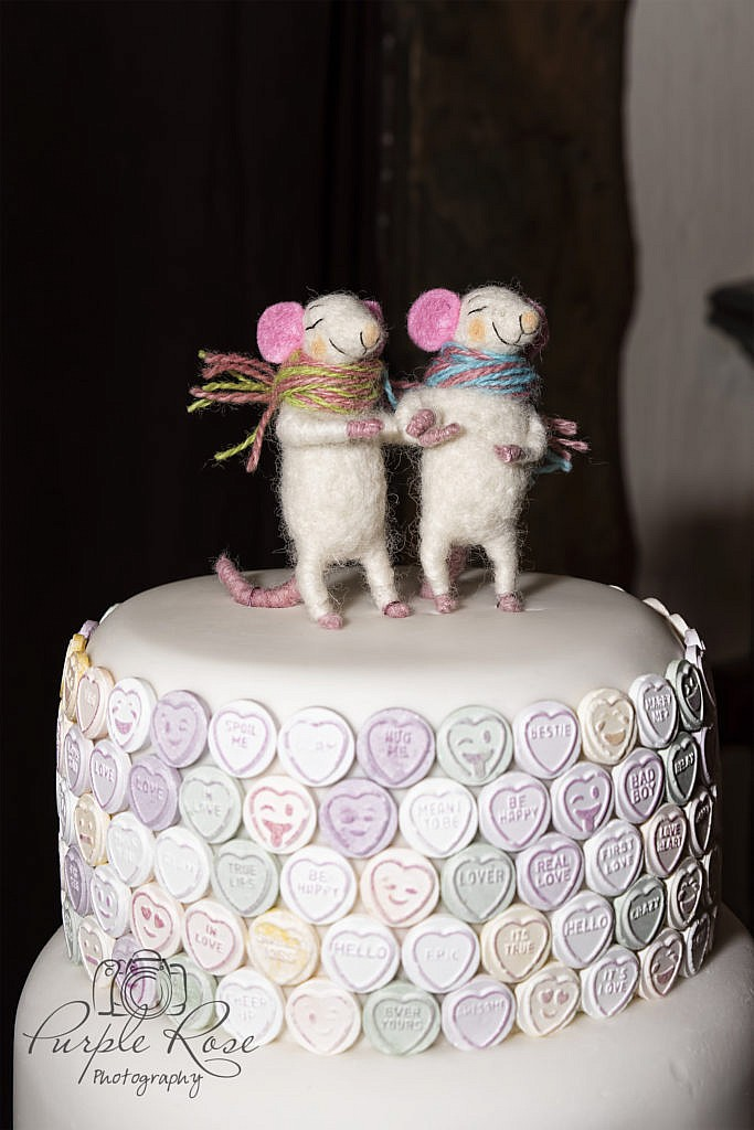 Mouse wedding cake camera
