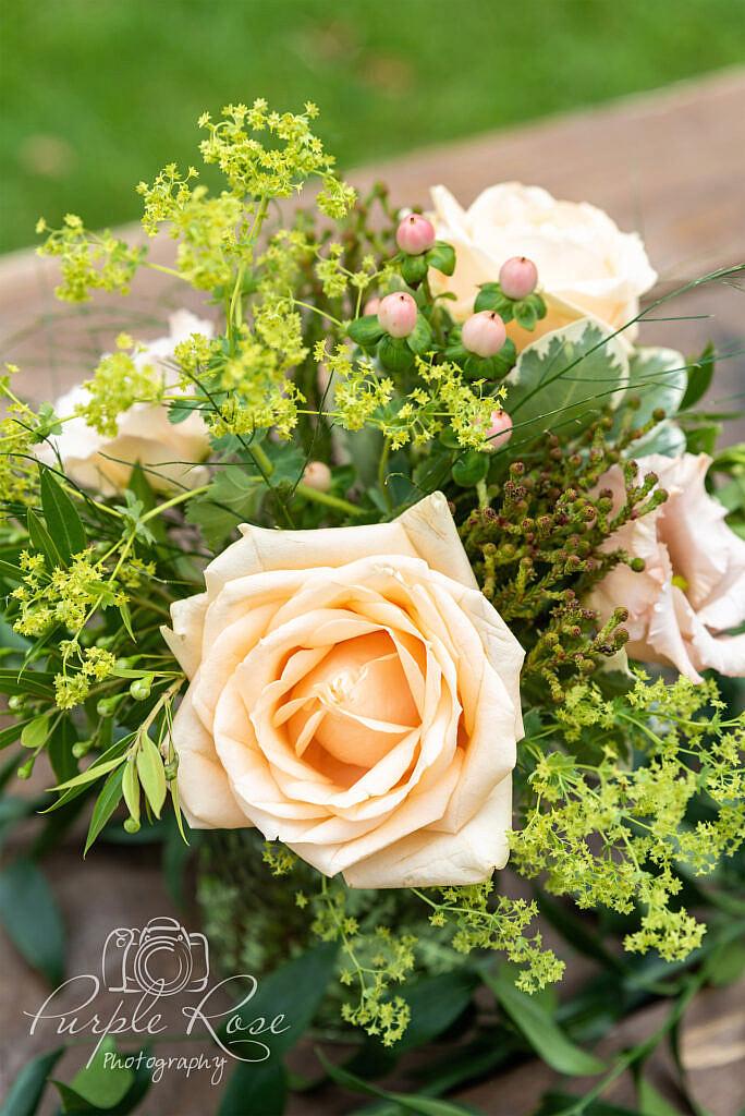Orange rose surrounded by foliage