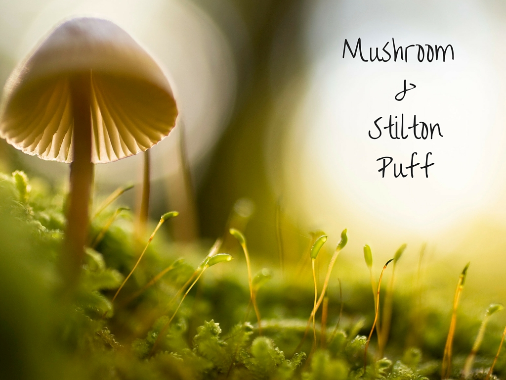 Wild mushrooms on a mossy ground with the title text in the corner