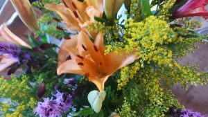 oragnge purple and yellow flowers closeup