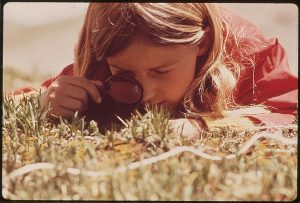 1024px-girl_uses_a_magnifying_glass_to_study_plant_life_in_the_tundra_of_the_rocky_mountains-_the_denver_pta_sponsored_a-_-_nara_-_543740