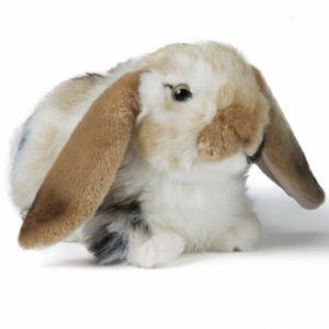 380x1000_fitbox-an316_rabbit_cream