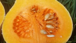The inside of a butternutsquash