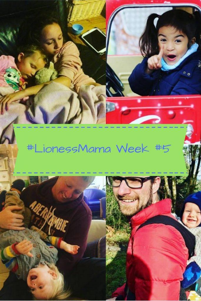 lionessmama-week-5