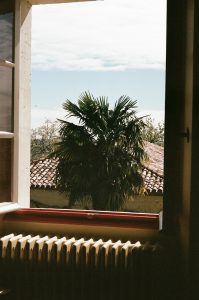 A large open window with a radiator underneath the window and a palm tree outside and a roof behind it